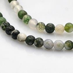 """Agate mousse naturelle chapelets de perles rondes, 4mm, trou: 1mm; environ 102 pcs/chapelet, 15.7""""(G-N0120-30-4mm)"""