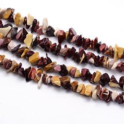"""Chapelets de perles en mookaite naturelles, puces, 5~8x5~8mm, trou: 1 mm; environ 31.5""""(G-O049-B-20)"""