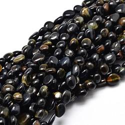 """Teints tigre naturel pépites oculaires brins de perles, 5~10x6~7x3~7mm, trou: 1 mm; environ 14.9""""~15.7""""(G-J335-25)"""