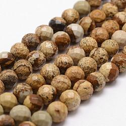 """Chapelets de perles en jaspe avec images naturelles, facette, rond, 6mm, trou: 1mm; environ 61 pcs/chapelet, 14.9""""~15.1""""(G-G736-27-6mm)"""