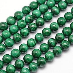 Chapelets de perles en malachite naturelle, ronde, 8mm, trou: 1mm; environ 47 pcs/chapelet, 15.5 pouces