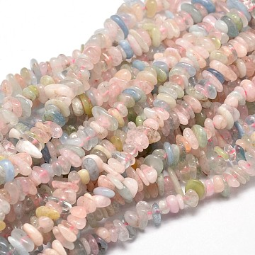 Natural Morganite Chip Beads Strands, 5~14x4~10mm, Hole: 1mm; about 15.5 inches~16.1 inches(X-G-E271-84)