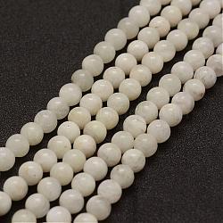 """Chapelets de perles en pierre de lune naturelle, grade AB, rond, 10mm, trou: 1mm; environ 39 pcs/chapelet, 15.3"""" (39 cm)(G-G970-37-10mm)"""