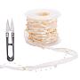 Goldenrod Plastic Ribbon(DIY-NB0002-70)
