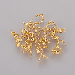 Iron Bead Tips, Calotte Ends, Clamshell Knot Cover, Iron End Caps, Open Clamshell, Golden, 7.5x4mm, Hole: 1mm, Inner Diameter: 3mm, about 671pcs/50g(X-IFIN-ZX020-G)