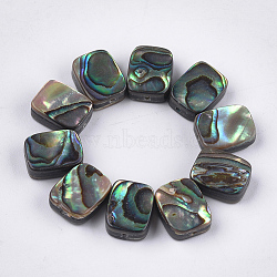 Abalone Shell/Paua Shell Beads, Rectangle, Colorful, 10x8x3.5~4mm, Hole: 1mm(X-SSHEL-T008-05)