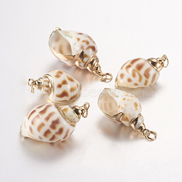 Electroplate Spiral Shell Pendants, with Brass Findings, Conch, Golden, 25~33x14~19x11~15mm, Hole: 3mm(SSHEL-J051-04)