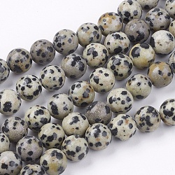 Natural Dalmatian Jasper Stone Bead Strands, Round, 8mm, Hole: 1mm; about 48pcs/strand, 14.9inches(X-G-R193-14-8mm)