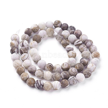 Natural America Petrified Wood Beads Strands, Frosted, Round, 6mm, Hole: 1mm; about 60~68pcs/strand, 15  inches~15.27 inches(38.2~38.8cm)(G-P430-03-B)