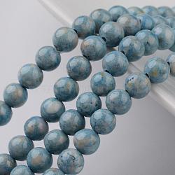 """Chapelets de perles en fossiles naturelles teintées, rond, clair bleu acier , 4mm, trou: 0.8mm; environ 95 pcs/chapelet, 16""""(G-E328-4mm-20)"""