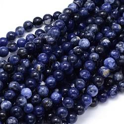 "Sodalite perles rondes naturelle brins, 6mm, Trou: 1mm, Environ 65 pcs/chapelet, 15.3""(G-F222-39-6mm)"
