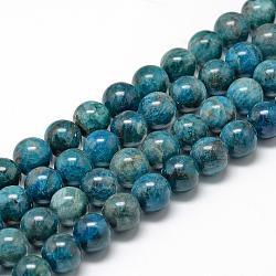 """Chapelets de perles en apatite naturelle, rond, 6~7mm, trou: 1mm; environ 60~67 pcs/chapelet, 15.7""""(G-R446-6mm-11)"""