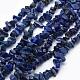 Natural Lapis Lazuli Beads Strands(X-G-P332-14)-1