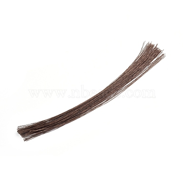 Paper Twist Ties, with Iron Core, Multifunctional Twist Plant Ties, for Plants Garden Office and Home, Saddle Brown, 360x0.6mm(AJEW-WH0021-18C-02)
