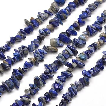 5mm Chip Lapis Lazuli Beads
