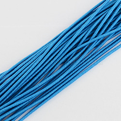 Elastic Cord, with Fibre Outside and Rubber Inside, DodgerBlue, 2.5mm; about 80m/bundle(EC-R004-2.5mm-08)
