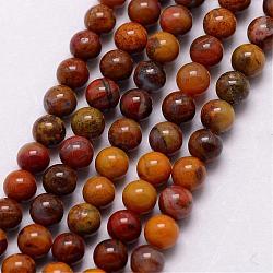 """Природные окаменелые нити шарик из дерева, круглые, 3~3.5 мм, Отверстие : 0.7 мм; около 115~125 шт / нитка, 16""""(G-K146-59-3mm)"""