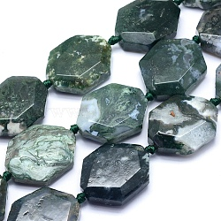"""Chapelets de perles en agate mousse naturelle, polygone, facette, 31~34x24~28x9.5~11mm, trou: 2mm; environ 10~11 pcs/chapelet, 15.5~16.1"""" (39.5~41 cm)(G-O170-73)"""