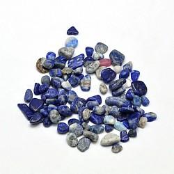 Lapis lazuli perles de puce, pas de trous / non percés, 5~8x3~4 mm; environ 86 pcs / 10 g(X-G-O103-21)