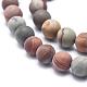 Natural America Picture Jasper Beads Strands(G-I213-20-8.5mm)-3