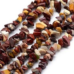Chapelets de perles en mookaite naturelles, puce, 5.5~13x4~8mm, Trou: 1mm; Environ 33'' (84cm)(G-P406-29)