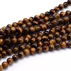 """Chapelets de perles d'œil de tigre naturel, Grade a, rond, 6mm, trou: 1mm; environ 60 pcs/chapelet, 15""""(X-G-J303-11-6mm)"""