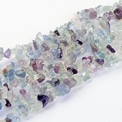 """Perles en pierres gemme, fluorite naturel, puces, couleur mixte, longueur d'environ 5~8 mm , trou: environ 0.3 mm, 32""""(F006)"""