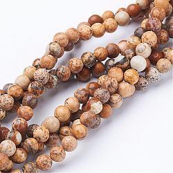 """Perles en pierres gemme, image naturelle jaspe, rond, environ 4 mm de diamètre, trou: environ 0.8 mm, 15~16""""(GSR4mmC016)"""