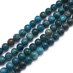 """Chapelets de perles en apatite naturelle, rond, 6mm, trou: 1mm; environ 64 pcs/chapelet, 15.7"""" (40 cm)(X-G-F591-01-6mm)"""