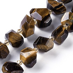 Natural Tiger Eye Beads Strands, Faceted, Nuggets, 10~12x11~13x10~13mm, Hole: 1.2mm; about 27pcs/strand, 15.3''(39cm)