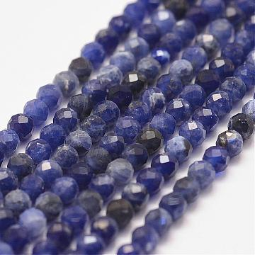 Natural Sodalite Bead Strands, Faceted, Round, 3mm, Hole: 0.5mm; about 127pcs/strand, 15.2inches(G-P279-58-3mm)