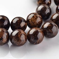 """Bronzite naturelle perles rondes brins, 10mm, trou: 1mm; environ 37 pcs/chapelet, 15.3""""(G-E330-10mm-03)"""