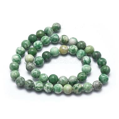 Natural Qinghai Jade Beads Strands(G-I254-06B)-2