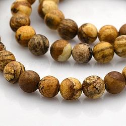"""Rondes image naturelle perles de jaspe brins, 8mm, trou: 1mm; environ 50 pcs/chapelet, 15.7""""(G-N0120-24-8mm)"""