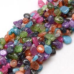 puces naturelles crépitent perles d'agate brins, teints et chauffée, couleur mélangée, 8~16x8~12x6~10 mm, trou: 1 mm; environ 59~60 perle / brin, 15~16(X-G-P032-06)