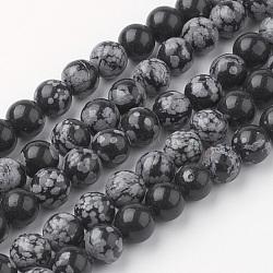 Flocon de neige naturelle chapelets de perles en obsidienne, rond, 8~8.5mm, trou: 1mm; environ 45~47 pcs/chapelet, 14.9'' (38 cm)(G-G735-72-8mm)