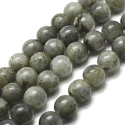 Natural Labradorite Bead Strands, Round, 8mm, Hole: 1mm; about 48pcs/strand, 15''