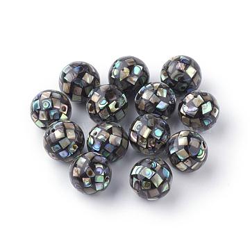 Natural Paua Shell Beads, Round, Black, 10mm, Hole: 1mm(X-SSHEL-Q298-10mm-09)