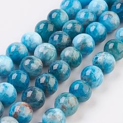 """Chapelets de perles en apatite naturelle, rond, 8mm, trou: 0.8mm; environ 51 pcs/chapelet, 15.7"""" (40 cm)(G-F568-020-8mm)"""