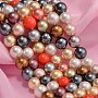 8mm Mixed Color Round Shell Pearl Beads(X-BSHE-F013-14M-8mm)