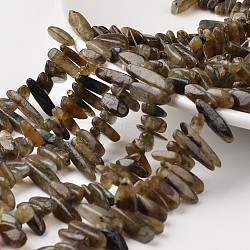 """Pépites labradorite naturelle brins de perles, 14~45x5~10x5~10mm, trou: 1mm; environ 43~90 pcs/chapelet, 14.9""""~15.7""""(G-M342-07)"""