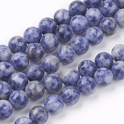 Natural Blue Spot Jasper Bead Strands, Round, 8mm, Hole: 1mm; about 53pcs/strand, 15.7inches(X-G-R193-15-8mm)