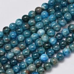 """Apatite brins de perles rondes naturelles, 6mm, trou: 1mm; environ 65 pcs/chapelet, 15.5""""(G-M304-14-6mm)"""