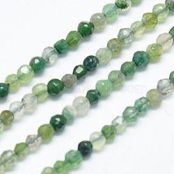 Chapelets de perles en agate mousse naturelle, facette, rond, olivedrab, 2mm, trou: 0.5(G-J002-03H)