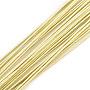 0.6mm LightKhaki Iron Wire(X-MW-S002-02E-0.6mm)