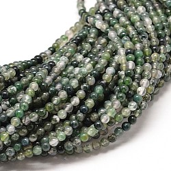 """Agate mousse naturelle chapelets de perles rondes, 10mm, trou: 1mm; environ 40 pcs/chapelet, 16""""(G-P072-01-10mm)"""