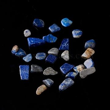 Natural Lapis Lazuli Chip Beads, No Hole/Undrilled, 5~10.5x5~7x2~4mm(G-M364-10)