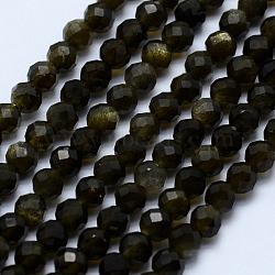 """Chapelets de perles en obsidienne dorée naturelle, facette, rond, 3~3.5mm, trou: 0.5mm; environ 130~138 pcs/chapelet, 15.7"""" (40 cm)(G-J369-16-3mm)"""