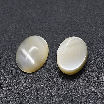 Shell Cabochons, Oval, White, 8x6x2.5mm(SSHEL-E567-25E)