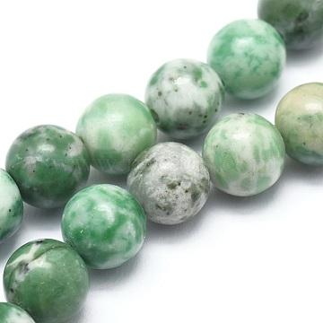 6mm Round Qinghai Jade Beads